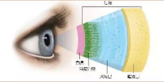 假期综合症眼睛委靡!宁波爱尔光明眼科教您快速